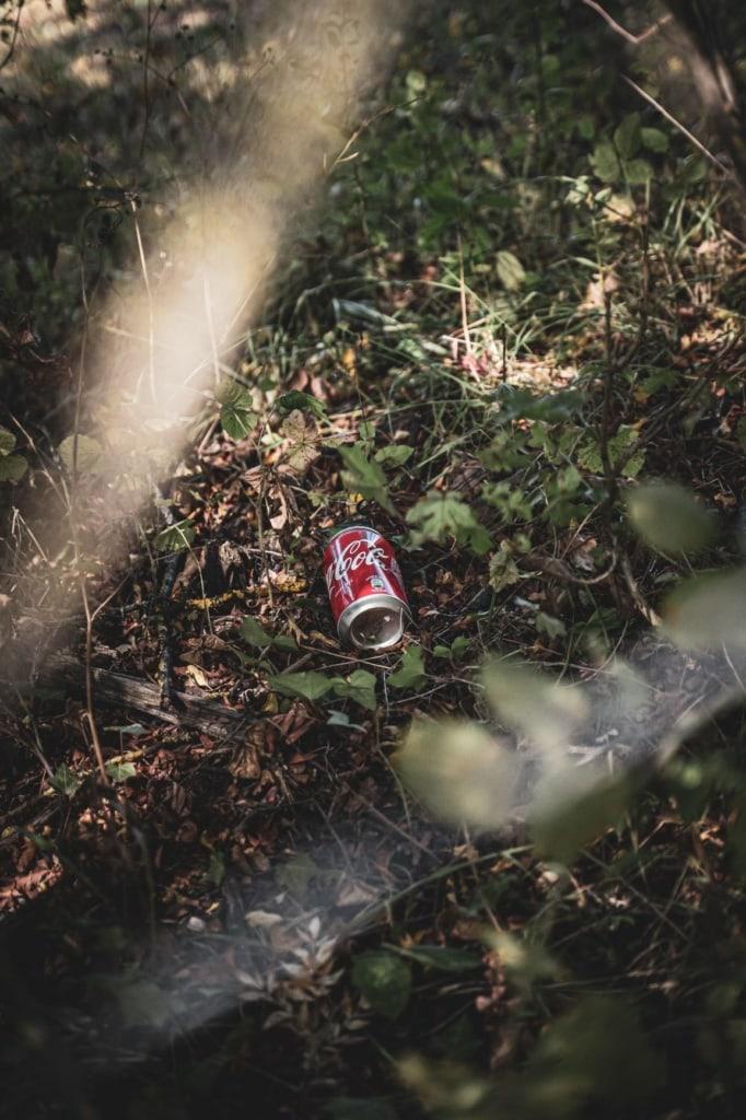 Müllproblem: Dose Cola im Wald