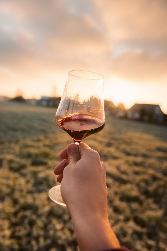 Person hält Glas Rotwein auf einer Wiese in die Höhe
