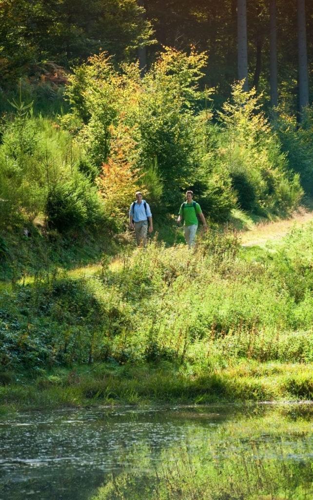 Urlaub in der Pfalz: Männer wandern am Kieselweiher entlang des Pfälzer Waldpfads