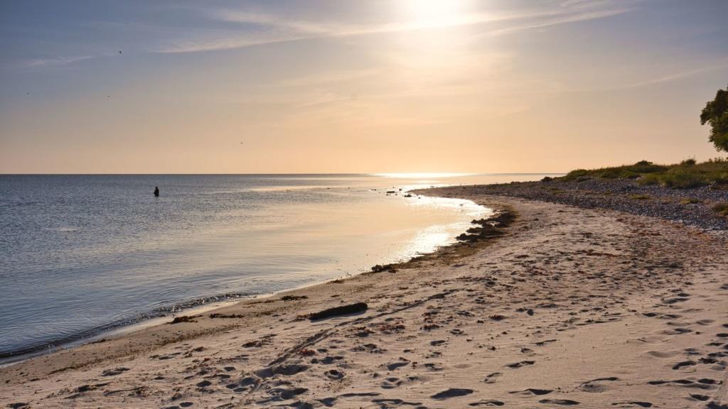 Schwimmer in der Ostsee bei Oehe