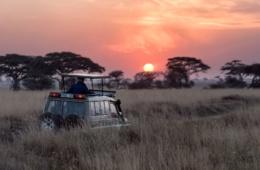 Safari-Auto bei Sonnenaufgang in der Serengeti