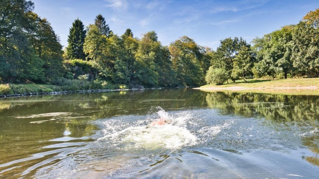 Wild Swimming in Deutschland: Schwimmer in Sieg bei Windeck