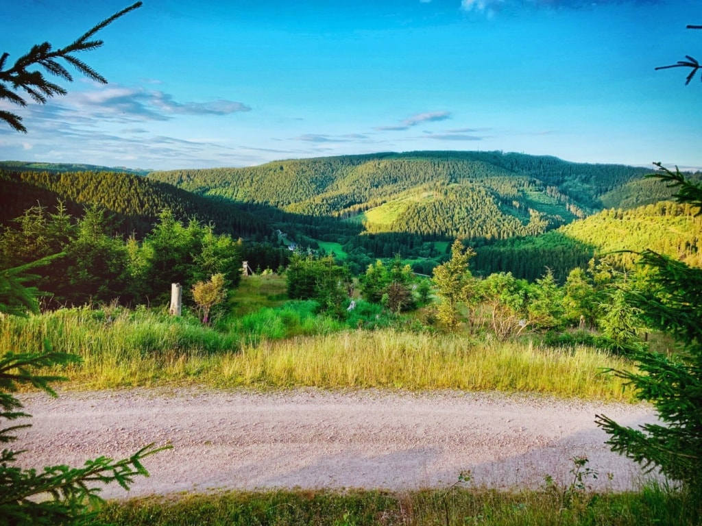 Weg und Landschaft im Thüringer Wald
