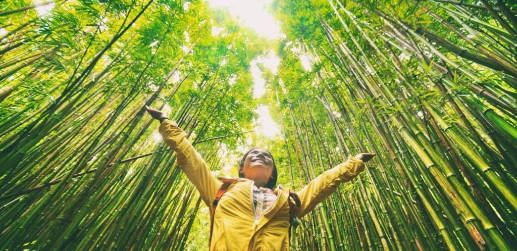 Wie nachhaltiges Reisen funktionieren kann