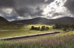 Belmond Royal Scotsman fährt durch Landschaft Schottland