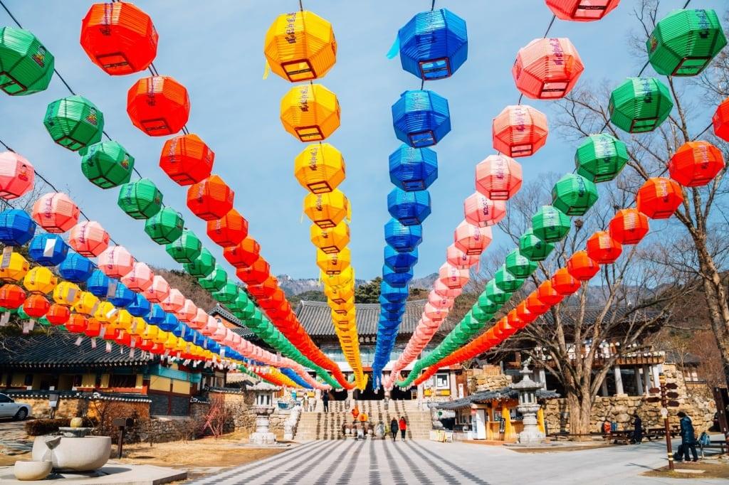 Daegu ist eine von Südkoreas größten Städten, und Stopp unseres Autors auf seiner Südkorea-Reise.