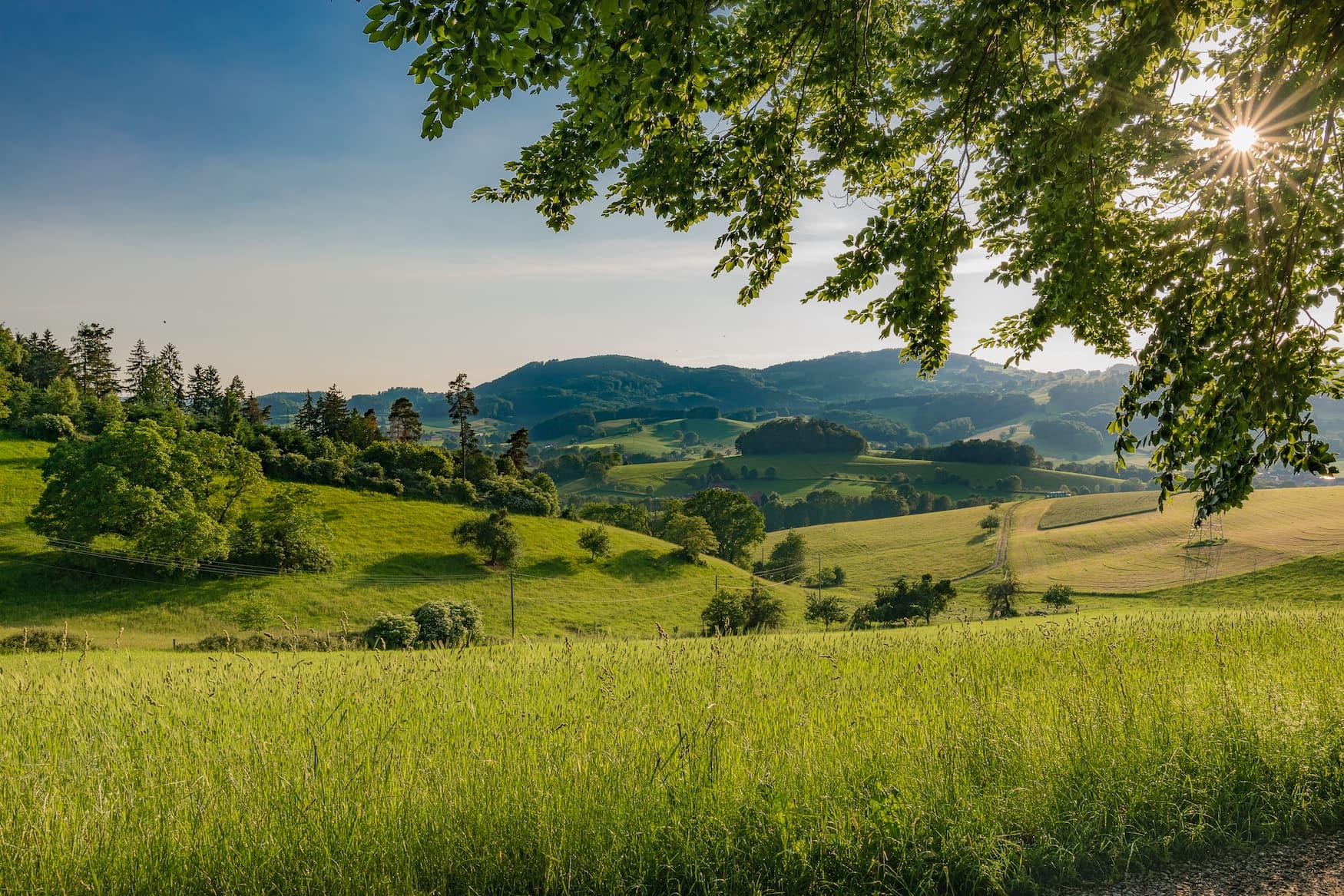 Blick auf einen Landschaftsabschnitt im Odenwald