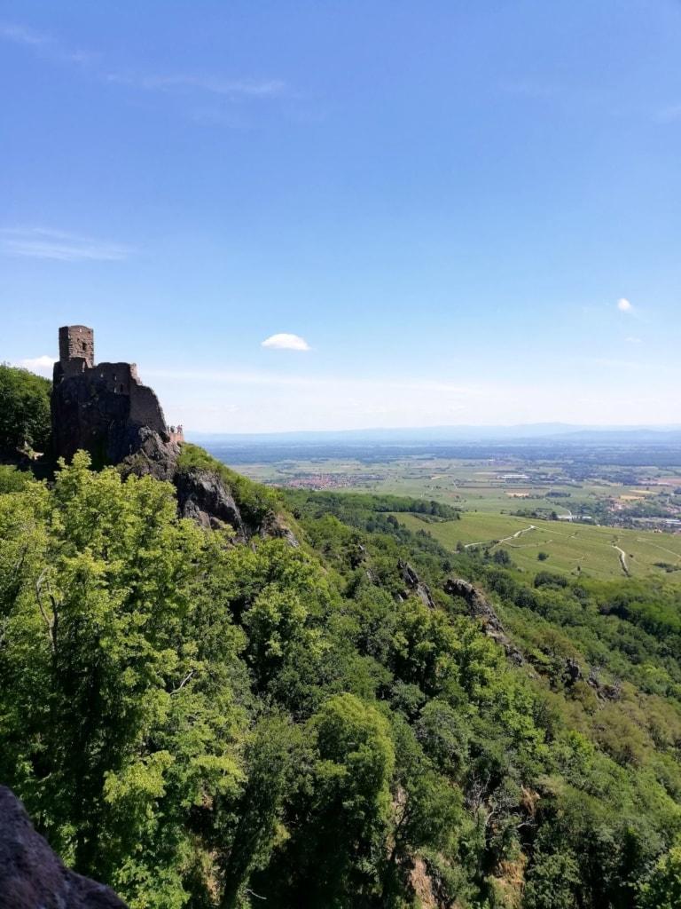 Burg bei Ribeauville im Elsass