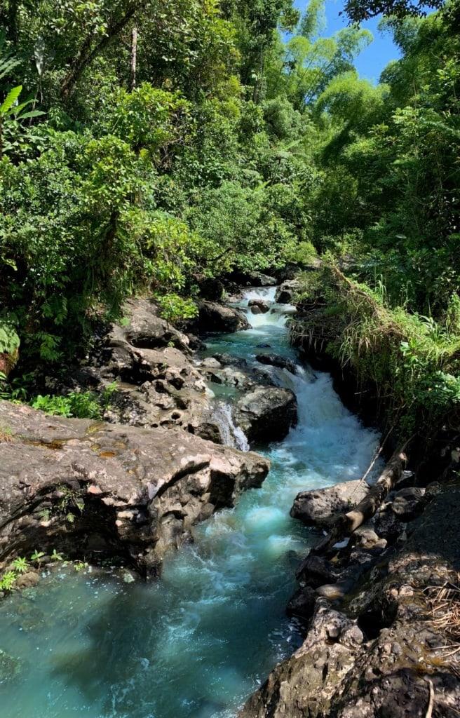 Blick auf einen Bach, der durch das Namosi-Tal fließt