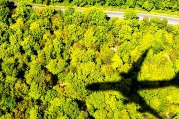 Schatten eines Flugzeuges, das über ein Waldgebiet fliegt