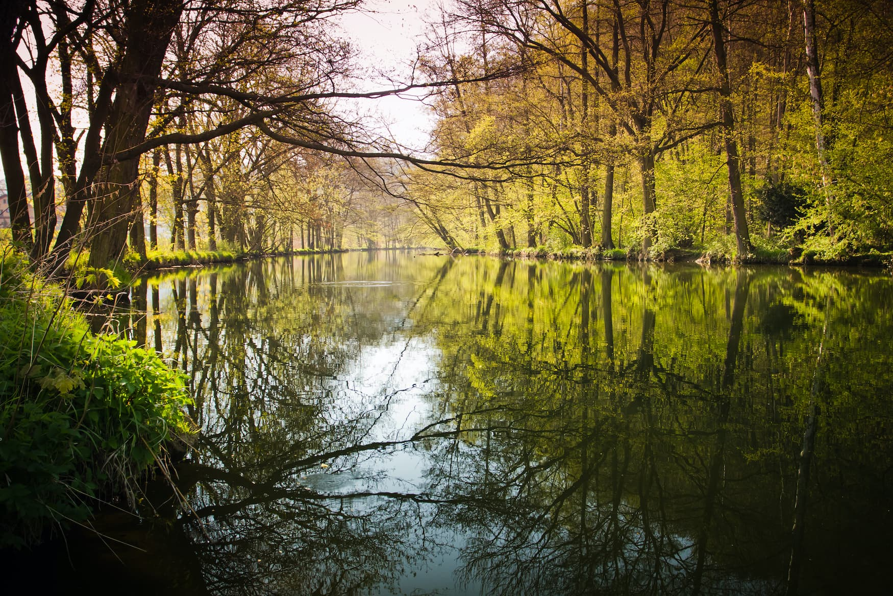 Fluss Orlice in Ostböhmen