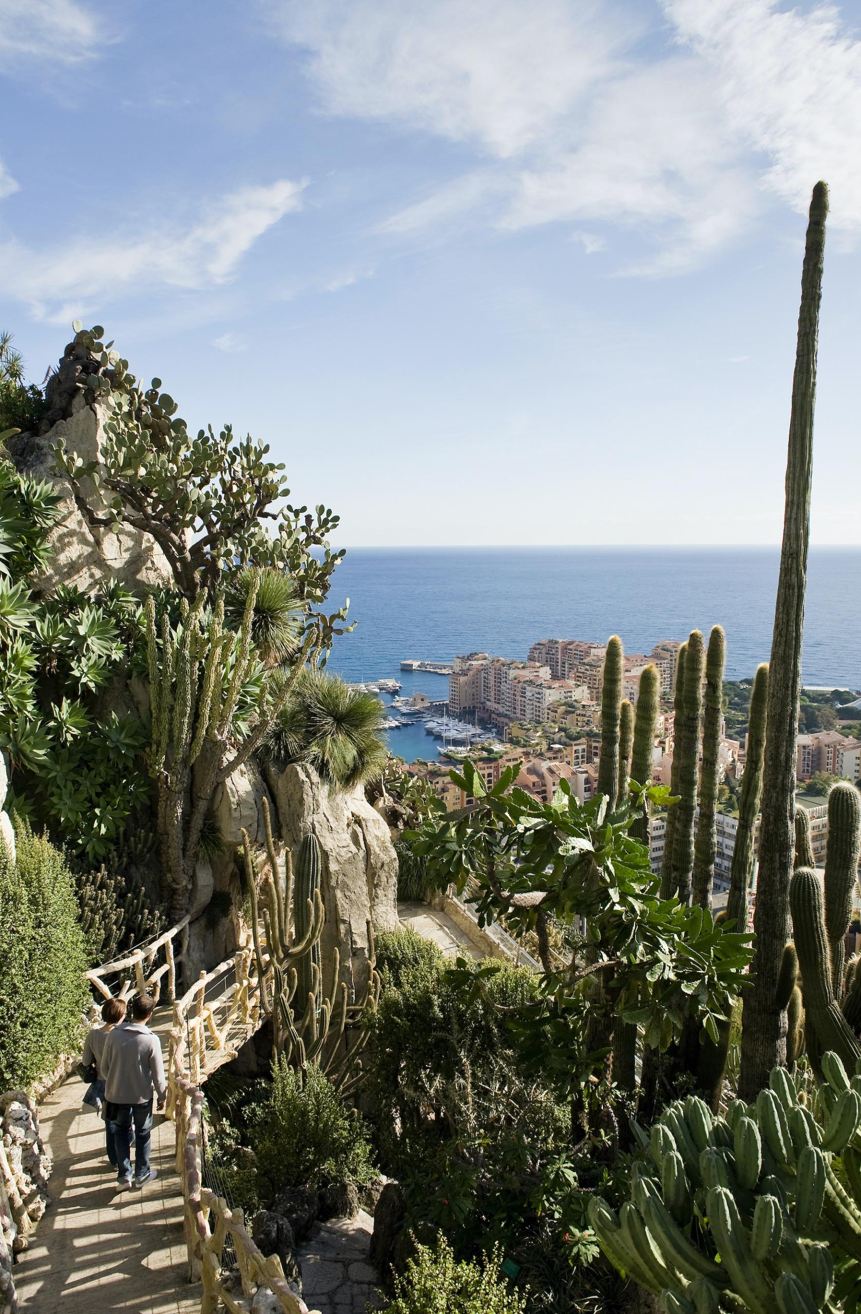 Vom Jardin Exotique hat man einen wunderbaren Blick auf den Yachthafen und die Altstadt von Monaco