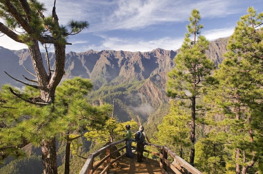 Die Natur von La Palma ist erstaunlich vielseitig.