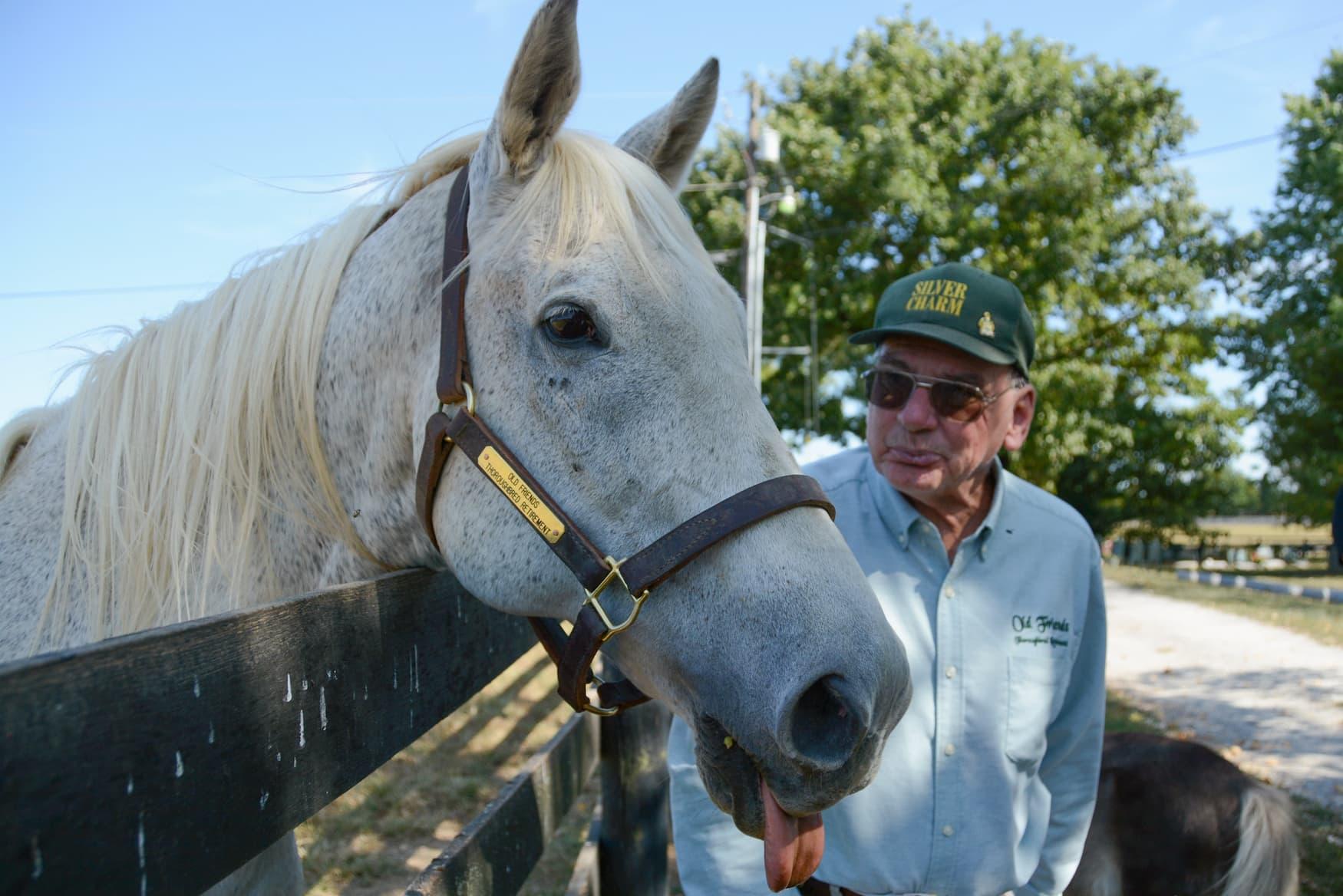 Rennpferd im Altersheim in Kentucky: Silver Charm und Michael Blouwen haben sich gesucht und gefunden