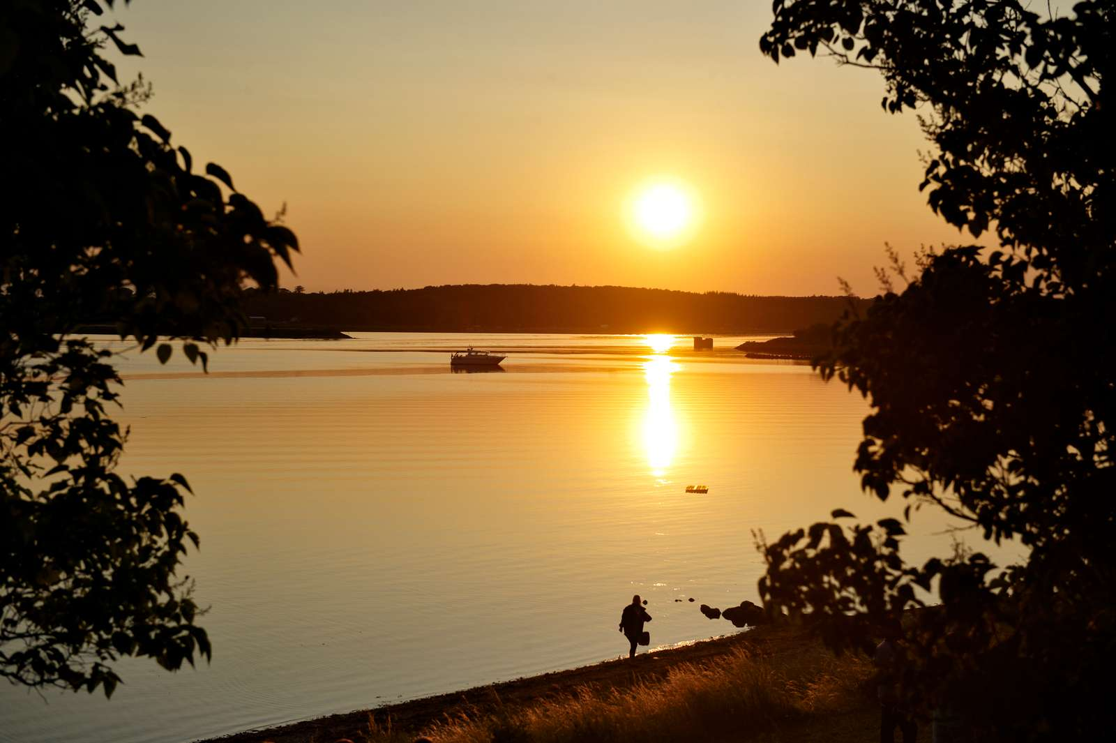 Sonnenuntergang im Roskilde Fjord in Dänemark