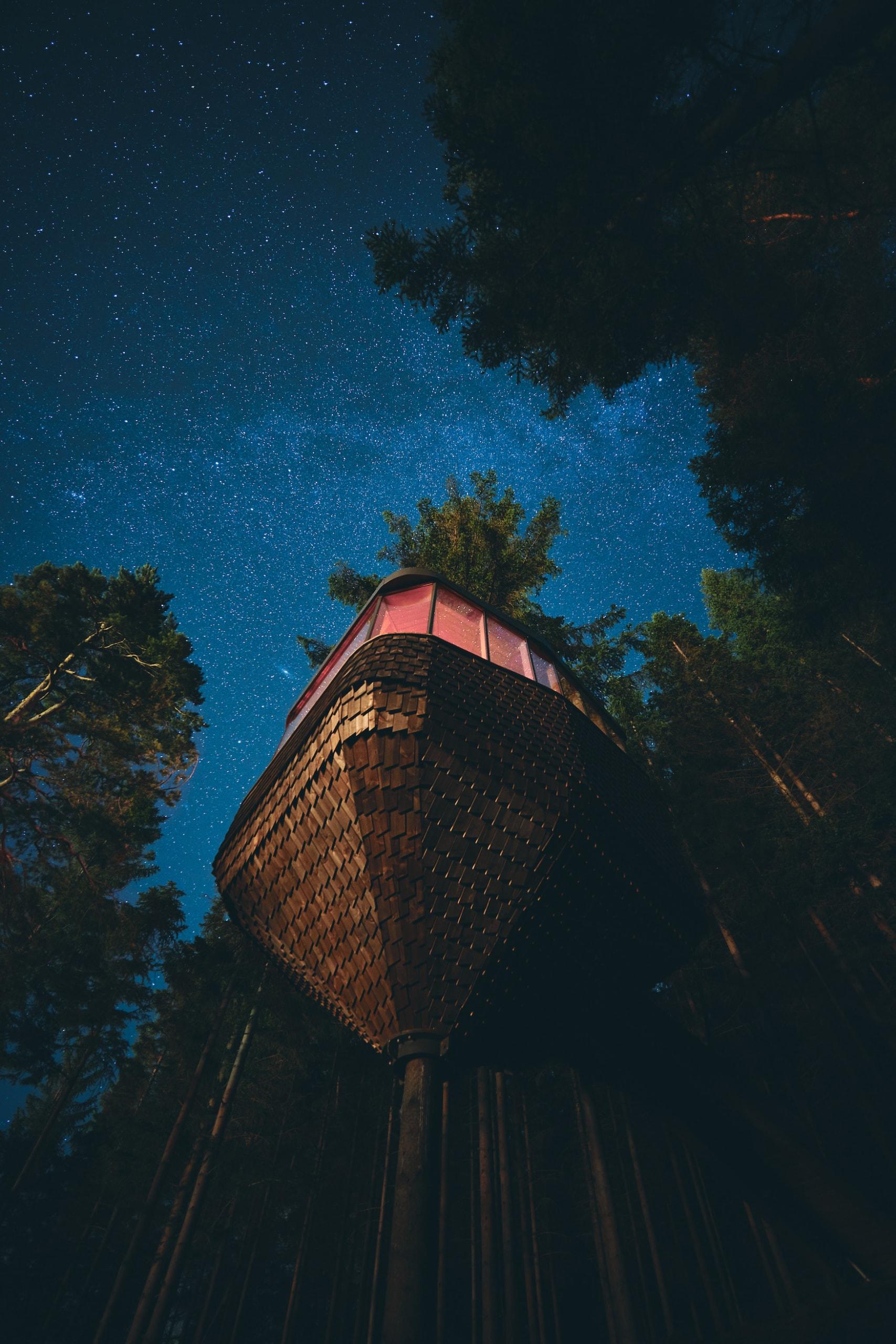 Woodnest bei nacht mit Sternenhimmel: Das Baumhaus ist eine neue, spektakuläre Unterkunft am Hadangerfjord in Norwegen.