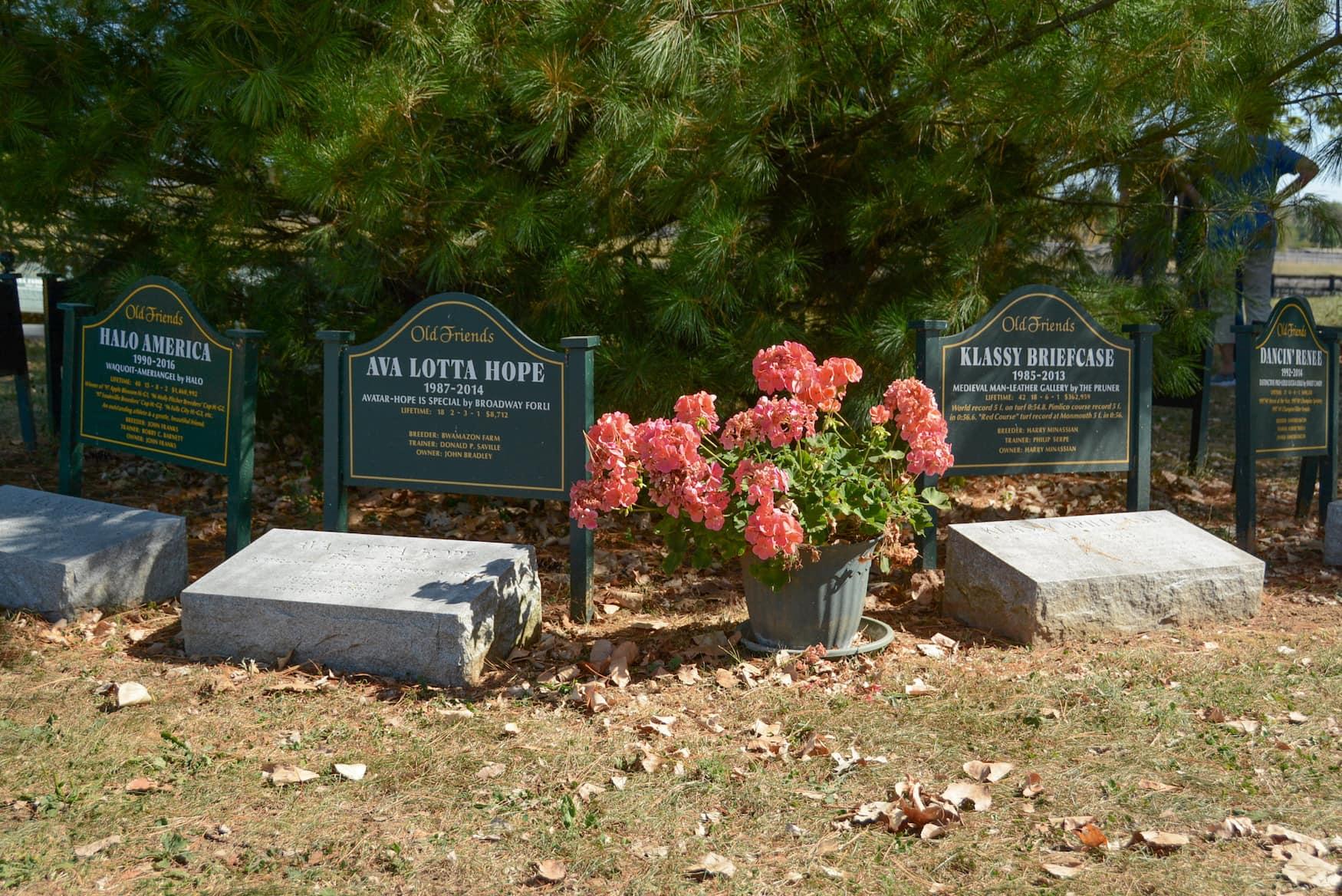 Friedhof für Rennpferde auf der Old Friends-Farm
