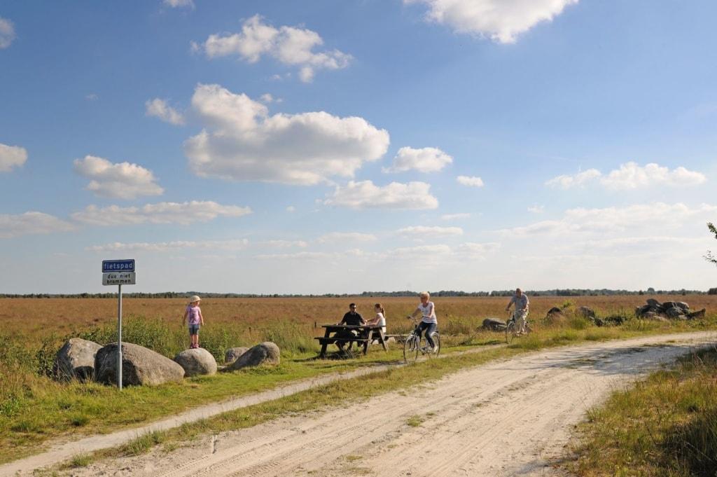 Radfahren in Bargerveen im Emsland