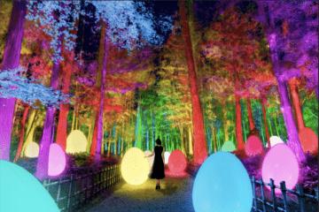 Kunst-Installationen im Higashi Tokorozawa Park in Japan