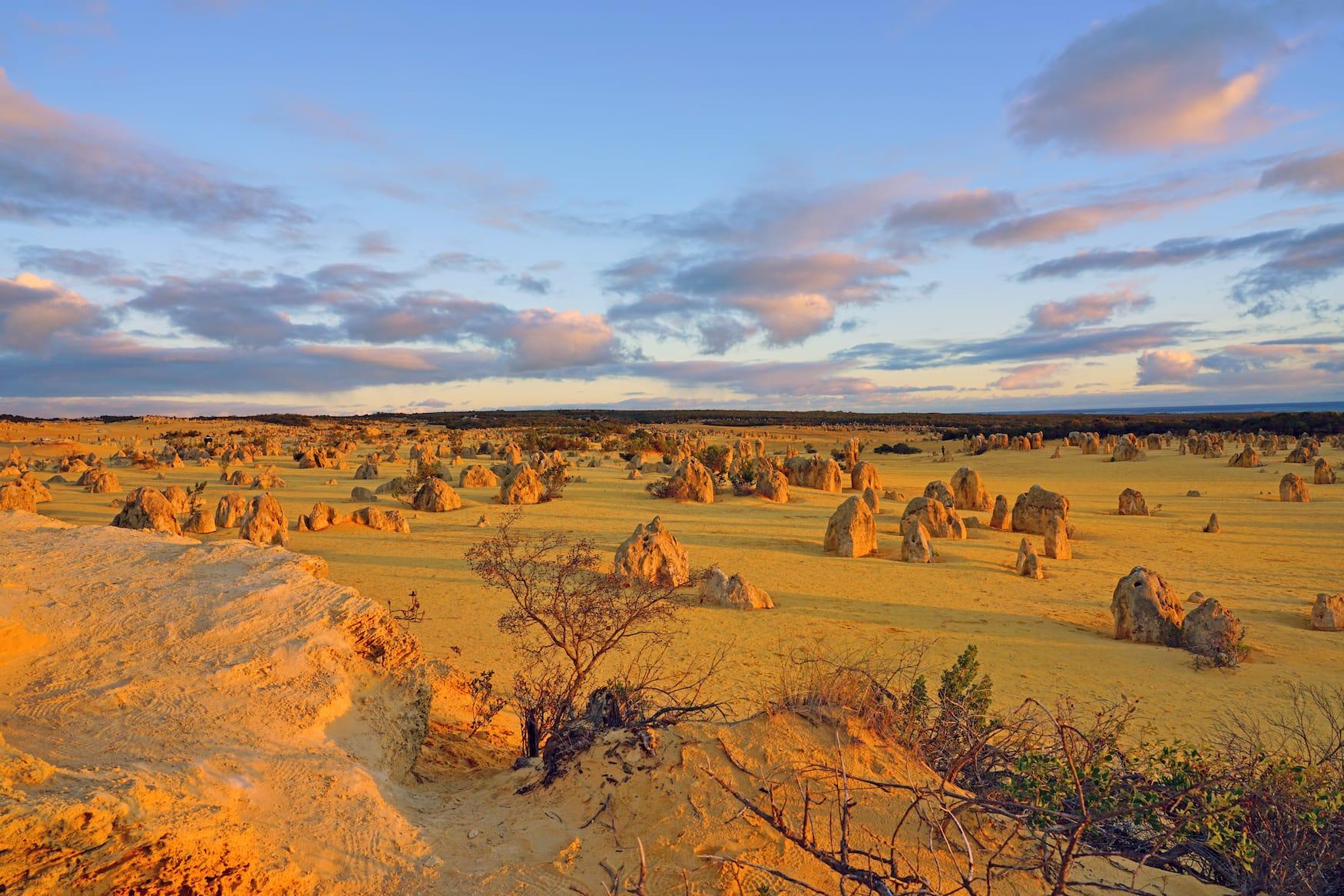 Der Nambung Nationalpark mit seinen Pinnacles