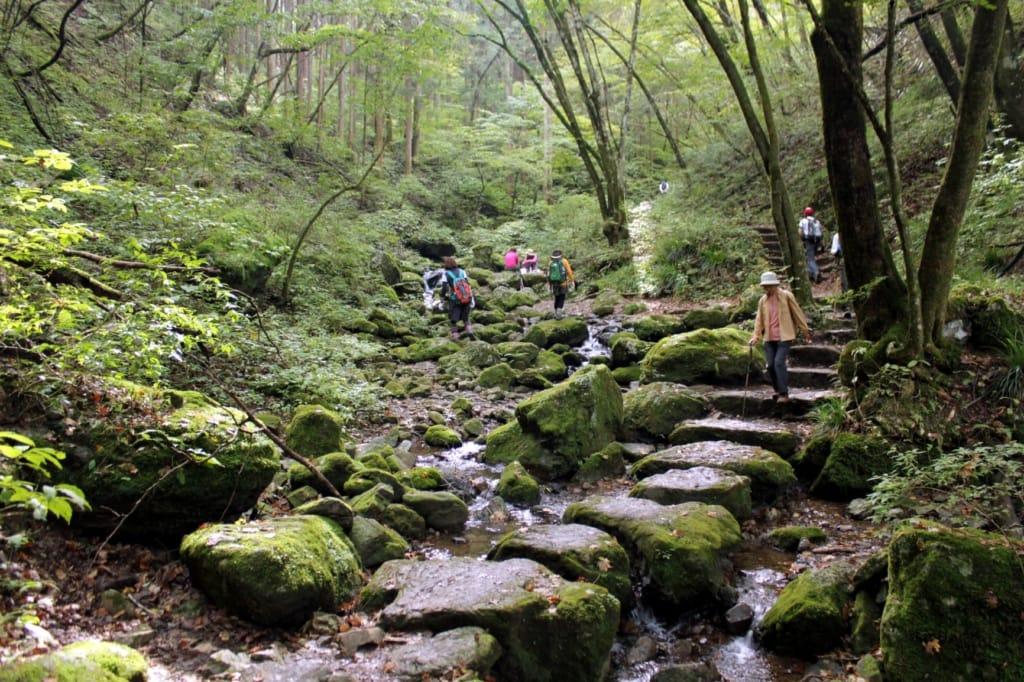 Wanderer am Mount Mitake