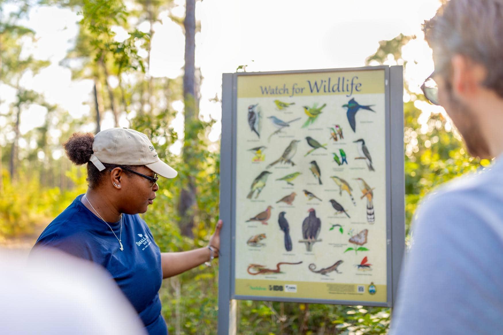 Tourguide zeigt Besuchern die Vögel, die man im Nationalpark sehen kann