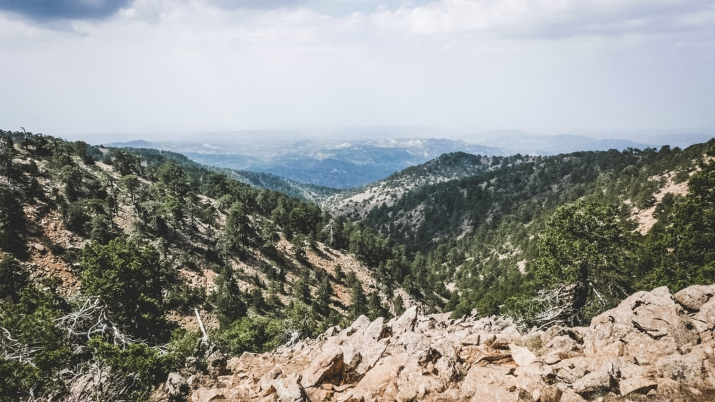 Troodos-Nationalpark in Zypern