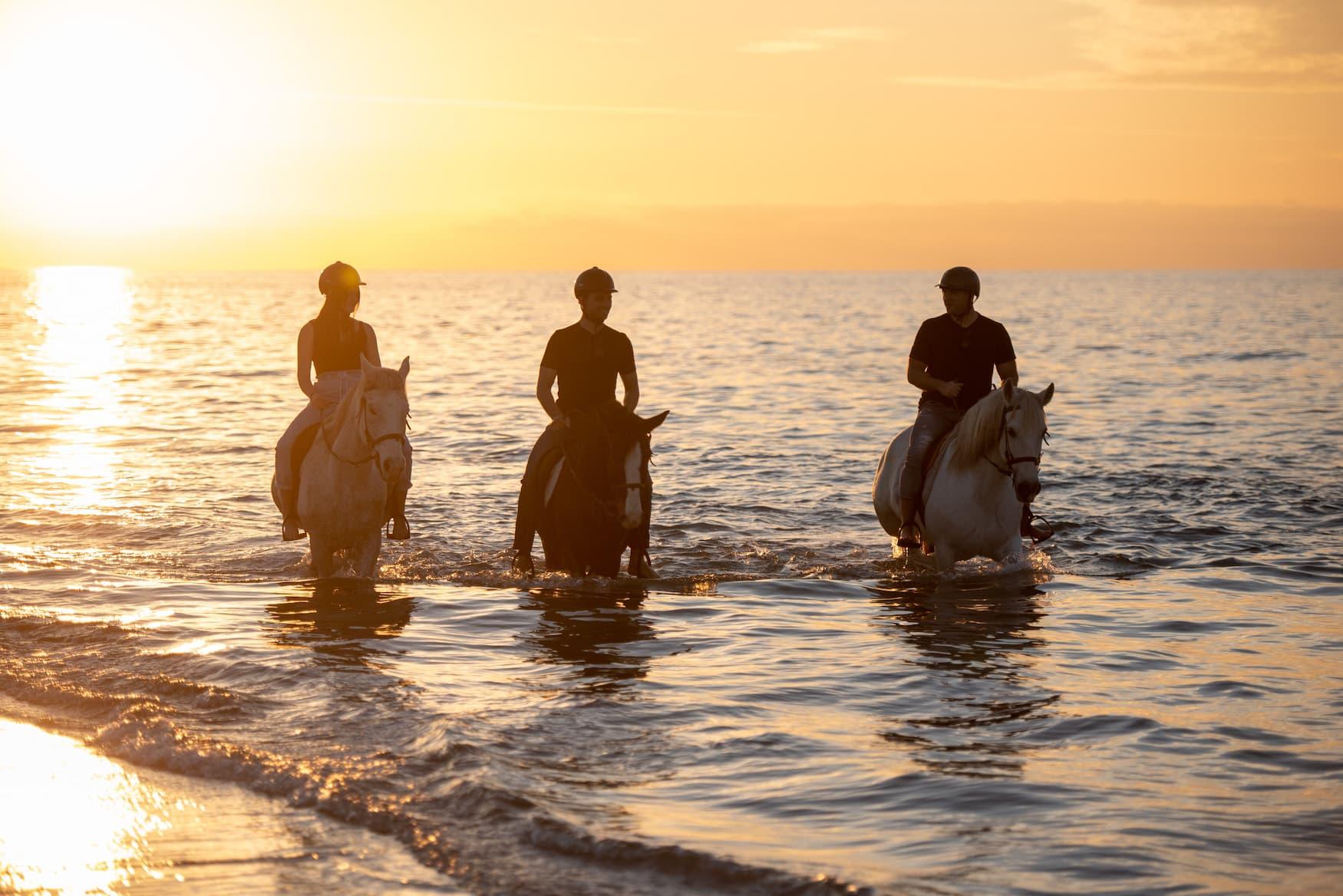 Menschen reiten während Sonnenuntergang auf der Insel Kos