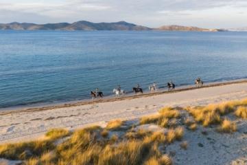 Reisende reiten auf Pferderücken am Strandufer von Kos