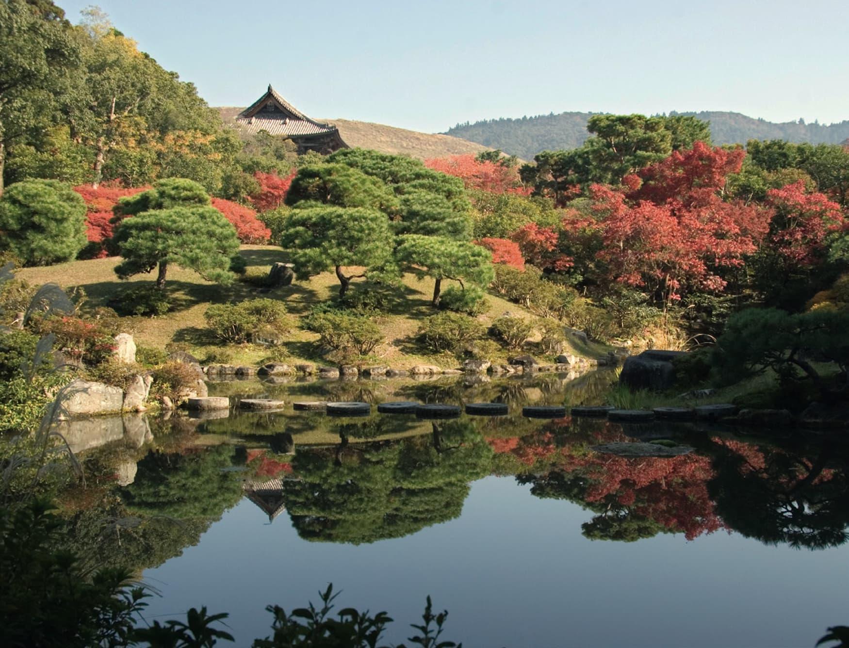 Teich in Japan