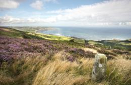 Robin Hoods Bay von Ravenscar aus gesehen an der North Yorkshire Coast