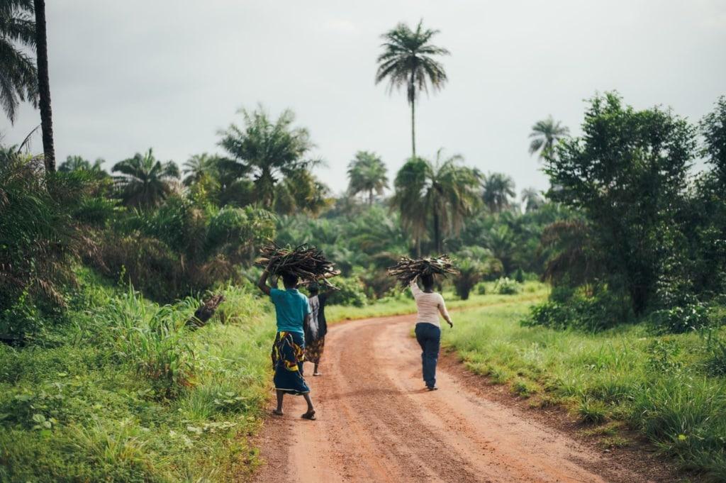 Landarbeiterinnen in Sierra Leone
