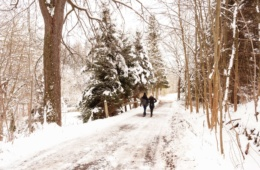 Spaziergänger im Wald im Winter