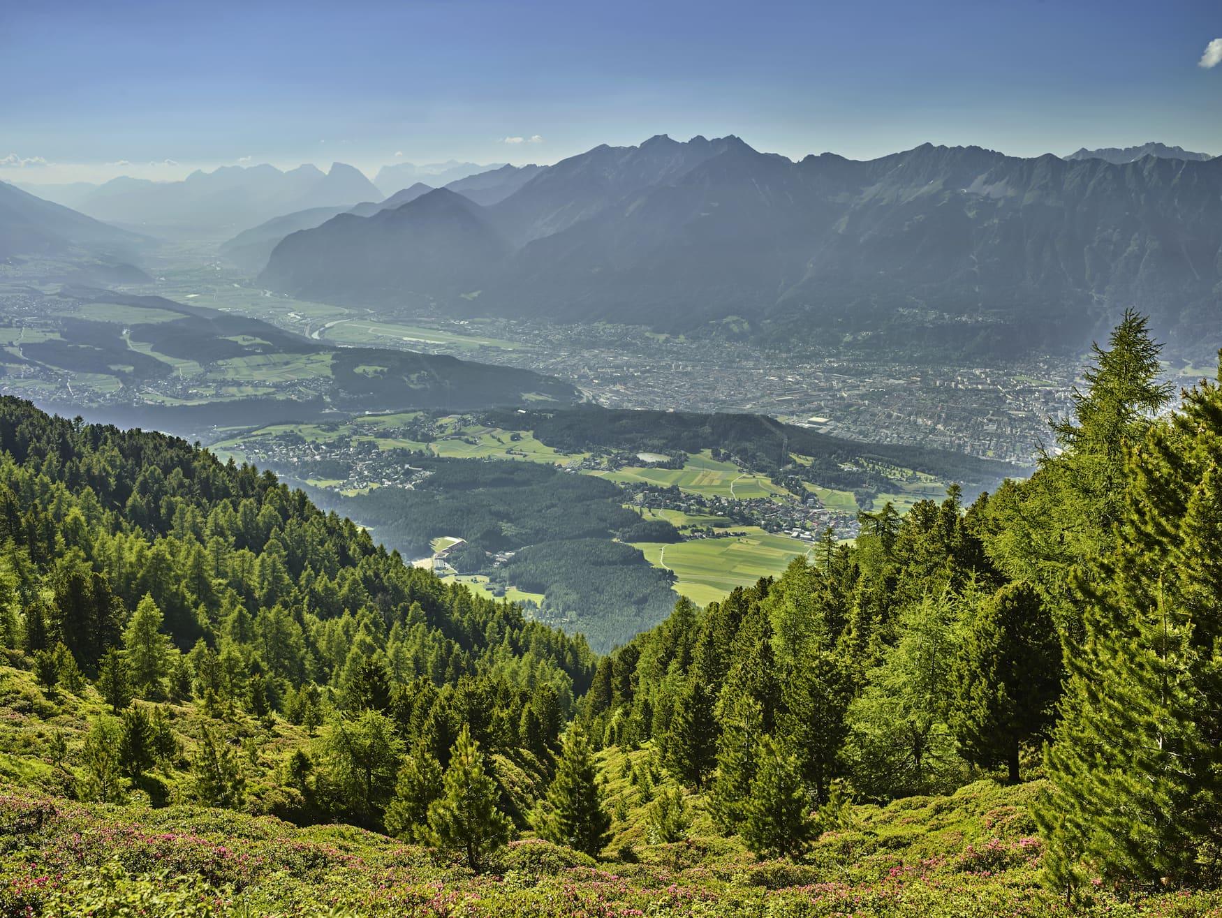 Blick vom Patscherkofel auf die österreichischen Alpen