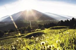 Blick auf die Kulisse der österreichischen Alpen vom Patscherkofel
