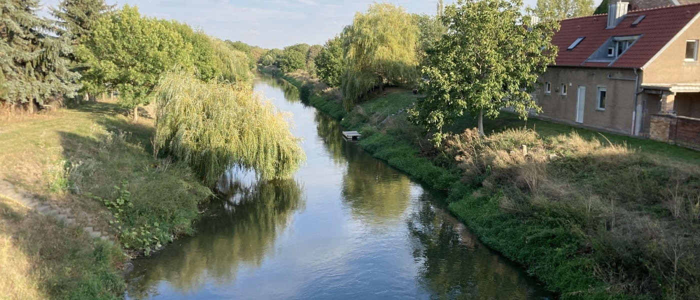 Der Unstrutradweg entlang des Flusses ist einfach malerisch.
