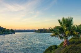 Sonnenuntergang über dem Whanganui River in Neuseeland, der besonders unter Umweltschutz steht