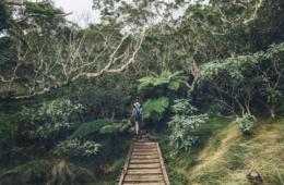 Frau beim Wandern durch dichten Wald auf La Réunion