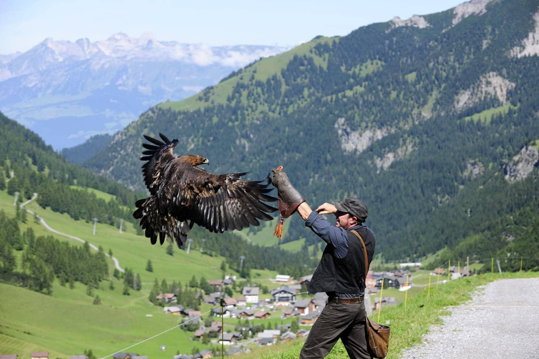 Adler fliegt um Wanderer