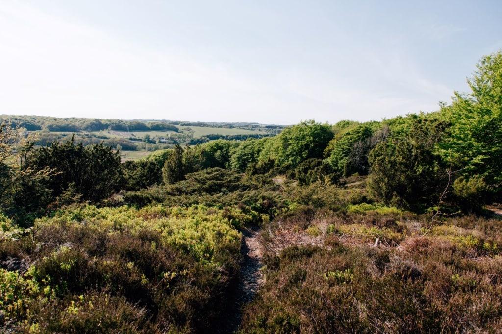 Nationalpark Rebild Bakker