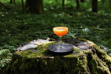 Orangefarbener Cocktail steht auf Baumstumpf
