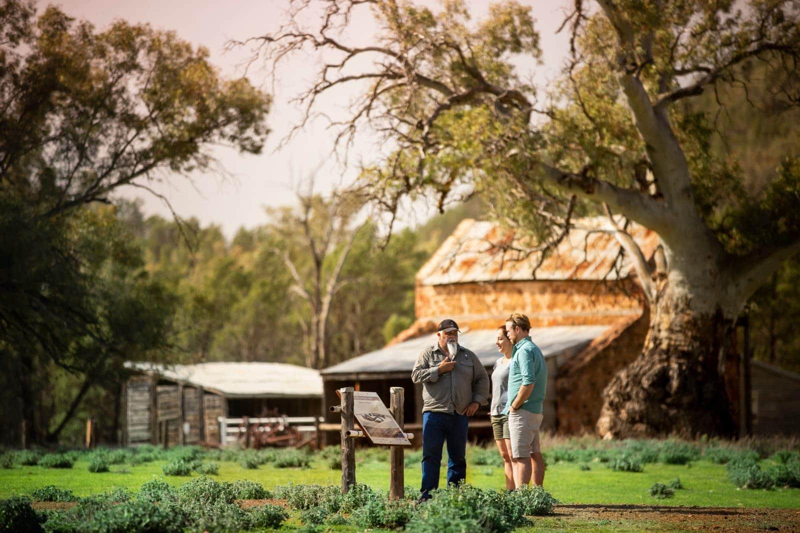 Auf den Spuren der Aborigines in Australien: Das Wilpena Pound Resort bietet traditionelle Führungen zu einer 550 Millionen Jahre alten Fossilienfundstelle und Felsmalereien.