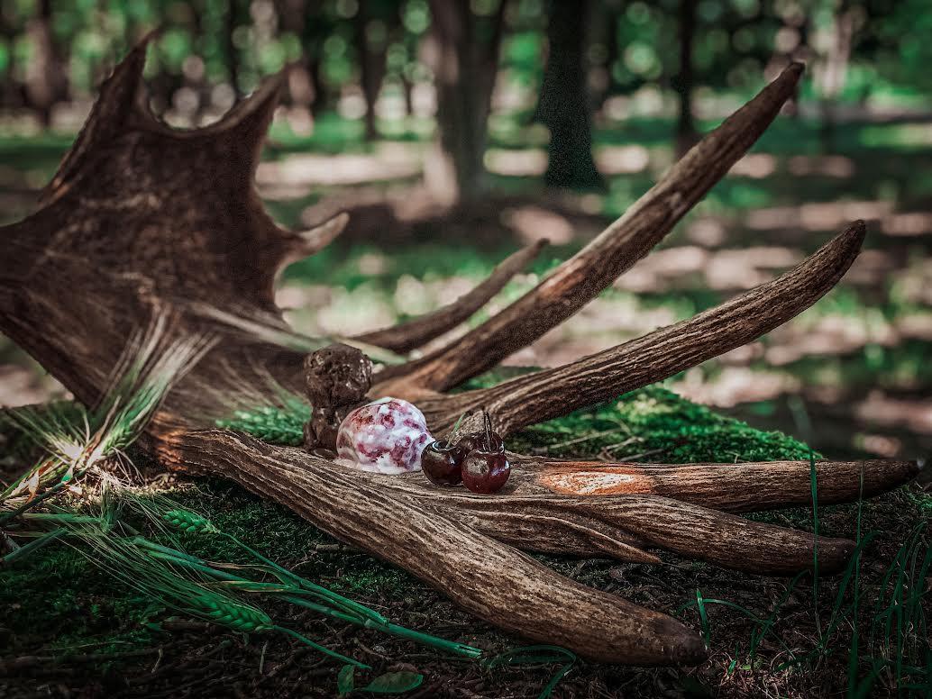 Ausgefallen Eissorten aus Litauen: Elchgeweih mit geräucherten Beeren