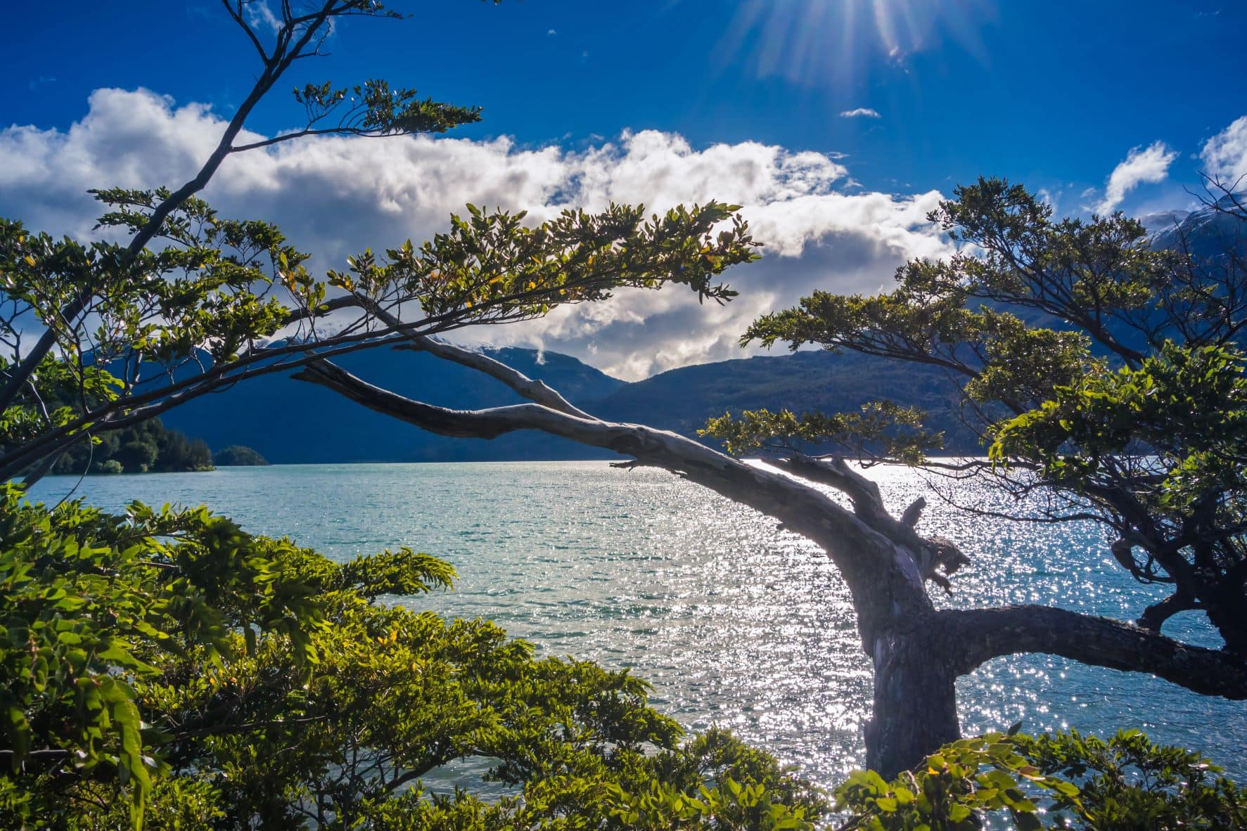 Los Alerces National Parque at Chubut Argentinien