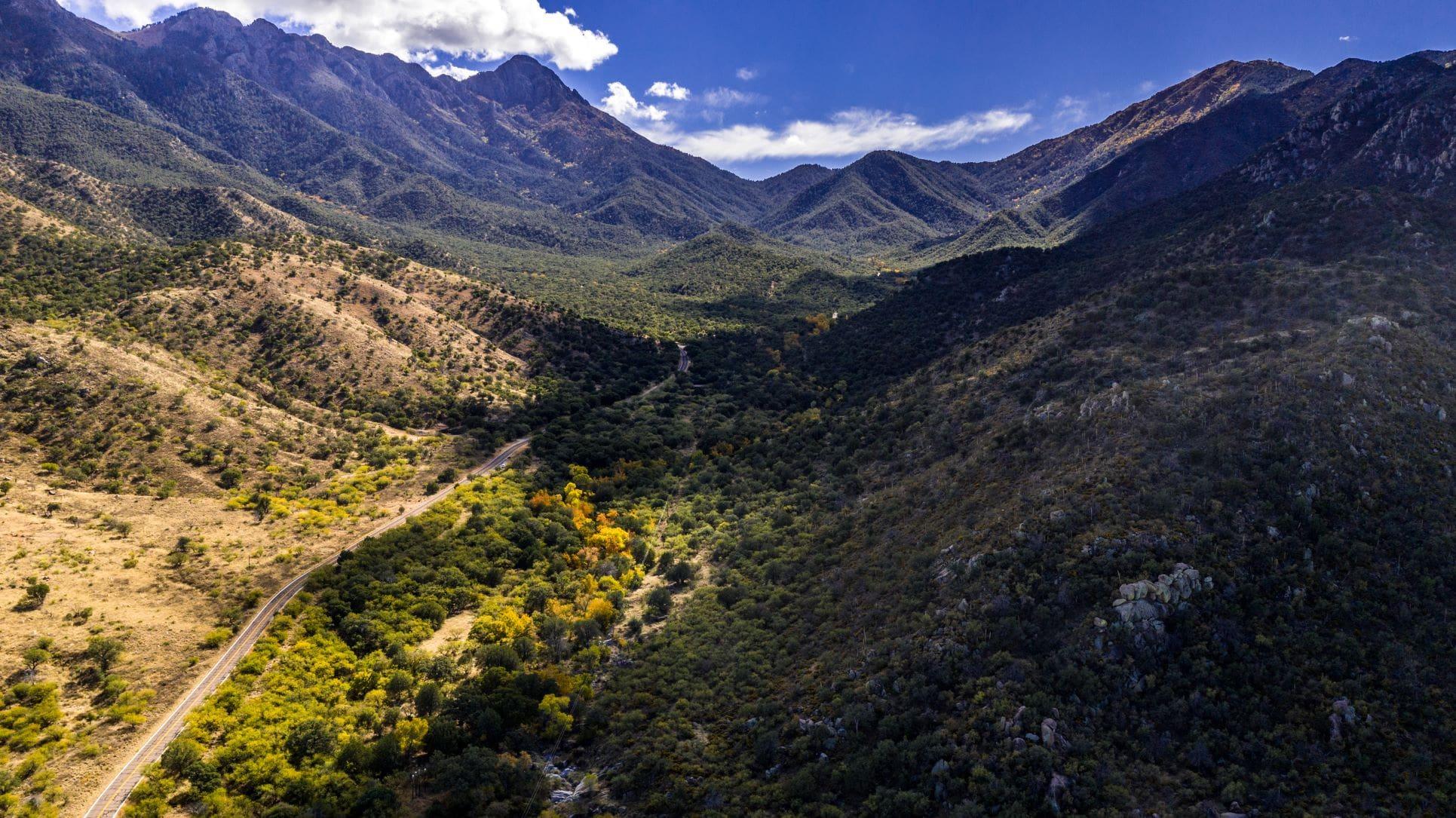 Madera Canyon Arizona