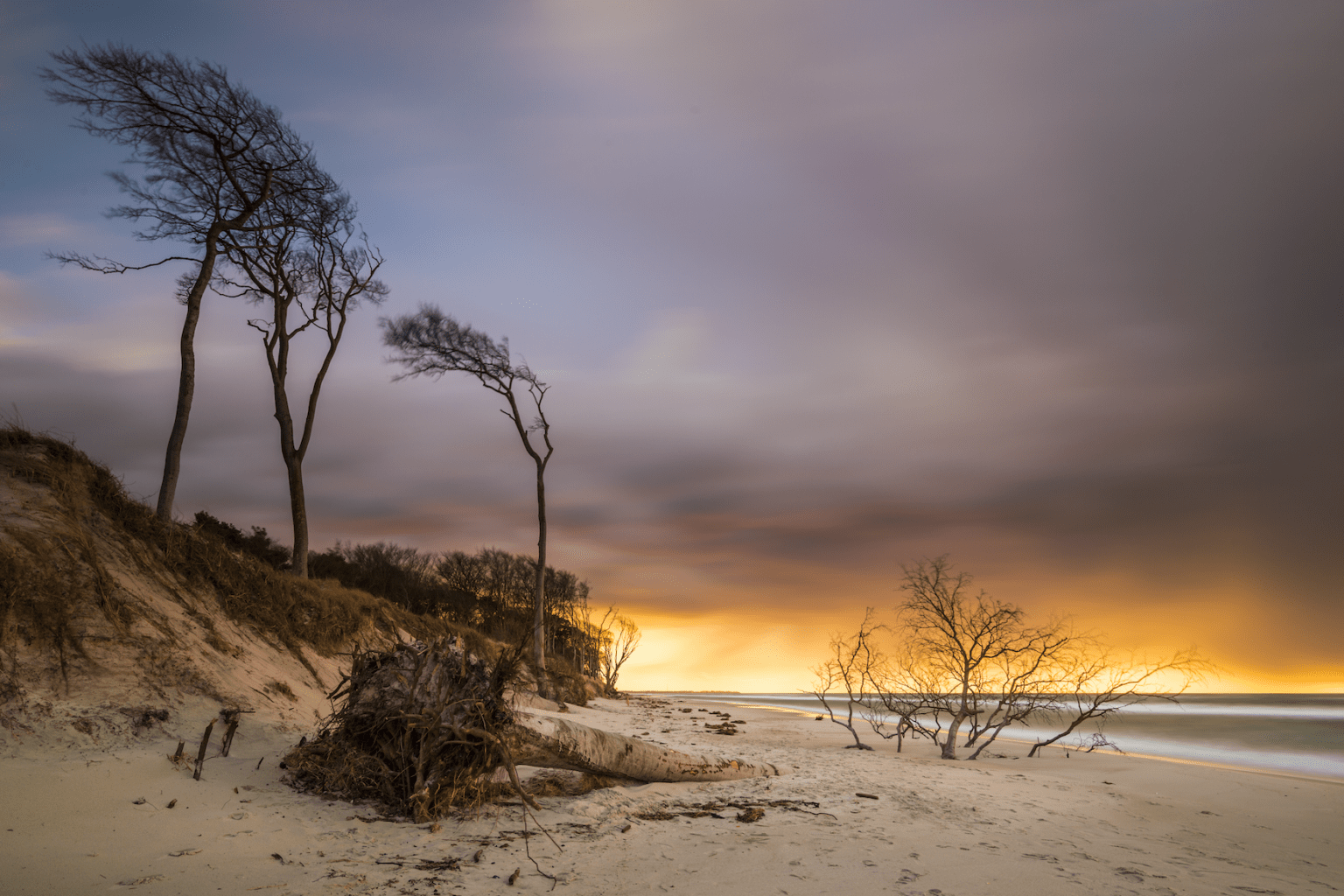 Besonders im Herbst warten beeindruckende Lichtstimmungen auf die Besucher des Darßer Weststrand im Nationalpark Vorpommersche Boddenlandschaft. | TMV/ Harms
