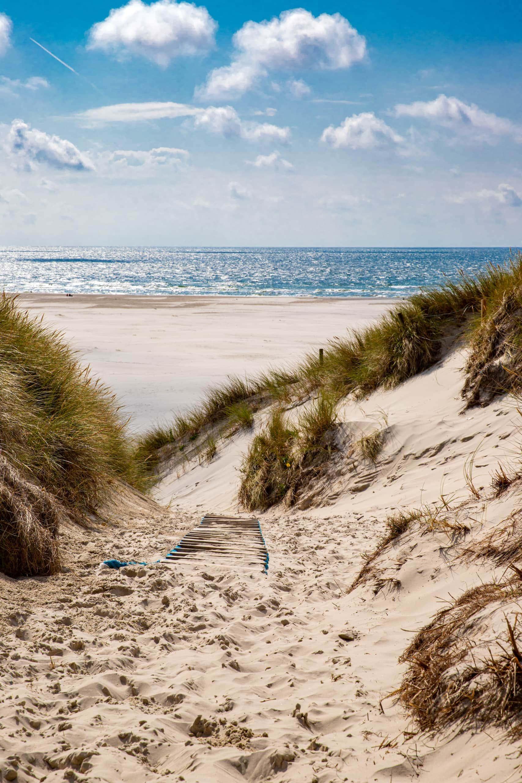 Schöne Strände in Europa: Strand in Amrum, Deutschland