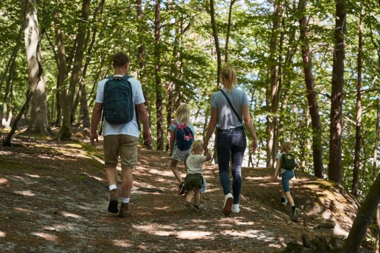 Familie unternimmt Waldspaziergang