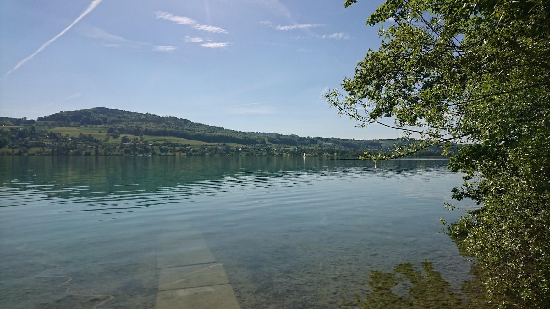 Hallwilersee in der Schweiz
