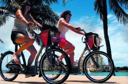 Grünes Miami: Fahrradfahren leicht gemacht
